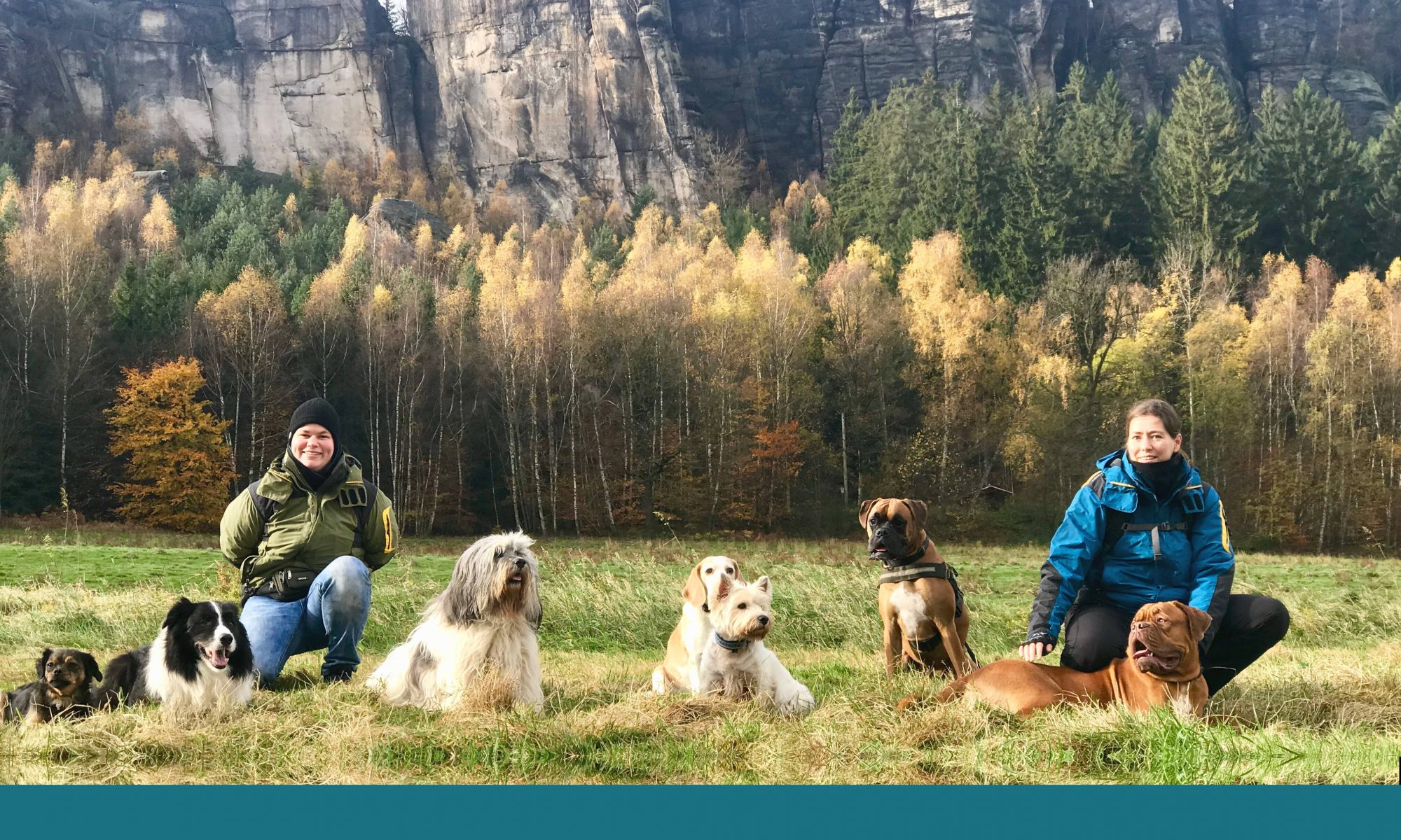 Hundeschule -hundorado